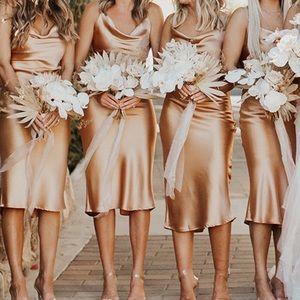 NWT Champagne Bias Cut Silky Slip Dress (size 6)